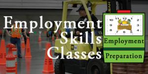 EmploymentSkillClasses